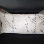 Pen Pal Microwavable Lavender Pillow