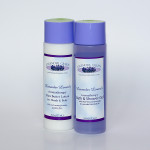 Lavender Lovers Gel Lotion Duo