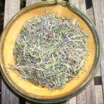 "Dried ""True"" Lavender Leaves"