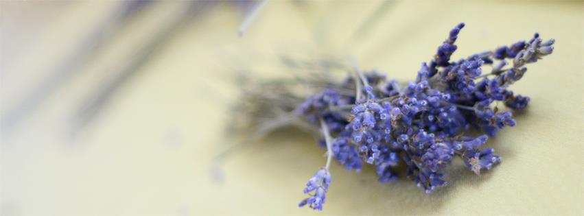 Lavender florets can be used in recipes like this one.